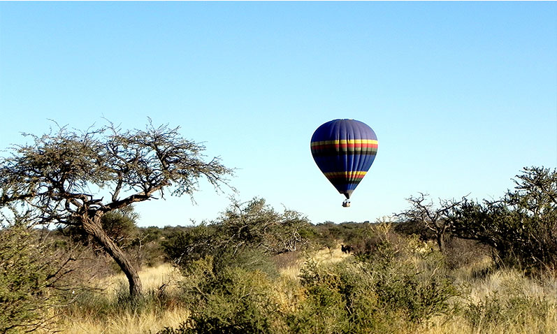 Glide over the savannah grass lands in a hot air balloon.